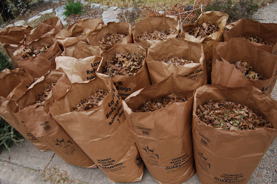 Yard Waste: Proper Disposal is Important – Neponset Stormwater ...